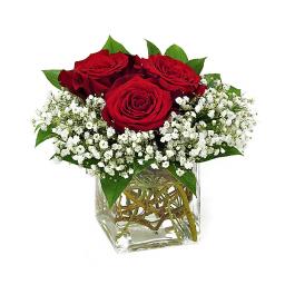 Cubo con rosas rojas