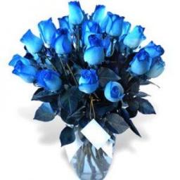 Florero con 24 rosas azules