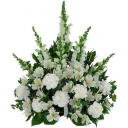 Palma de flores variadas blancas